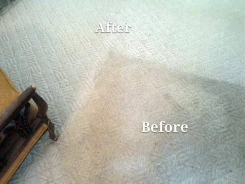 Carpet cleaning, Newtown PA