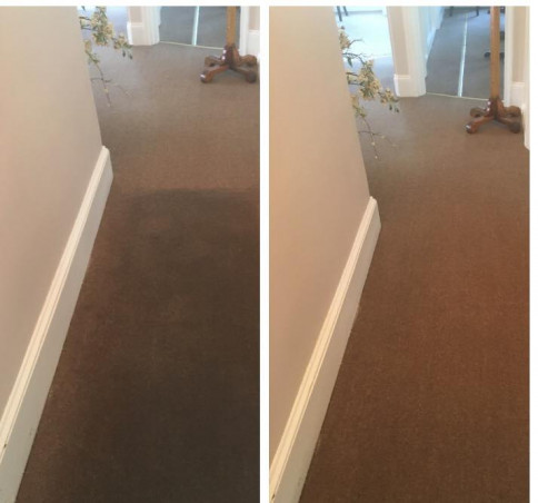 Carpet cleaning, Yardley PA